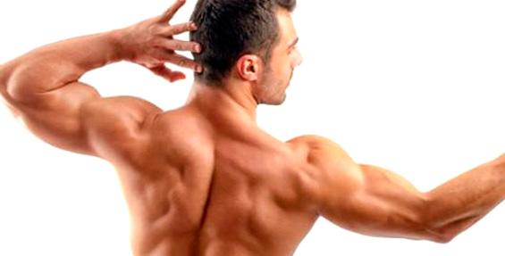 tratamiento magnetoterapia extremidades superiores y hombros