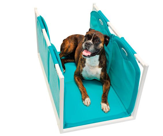 magnetoterapia uso veterinario particular