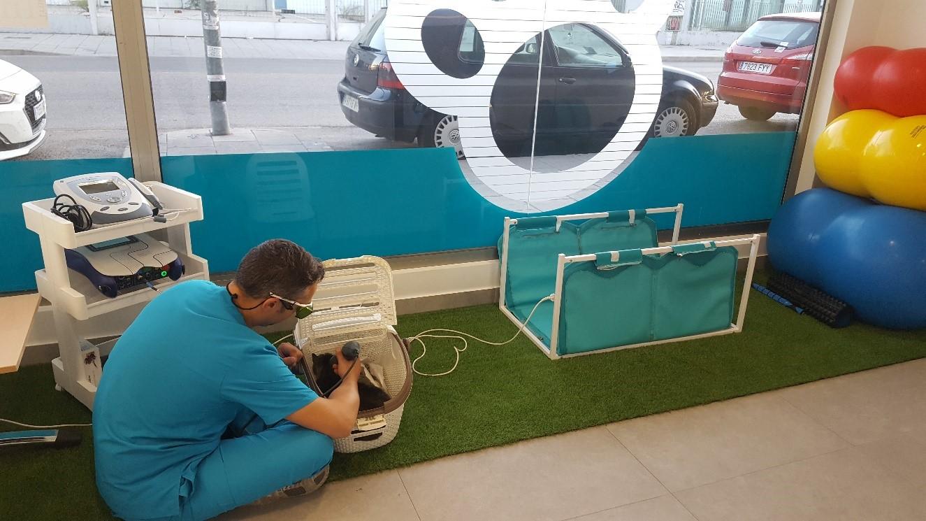 Tolmo poncho magnetoterapia veterinaria